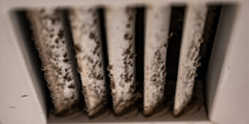 How to Have a Mold-Free HVAC System